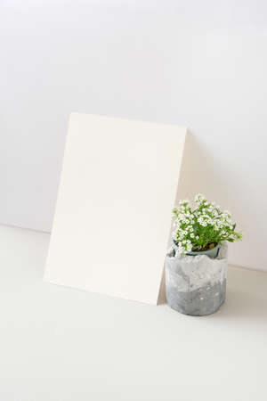 Greeting card with blooming houseplant and blank paper sheet.