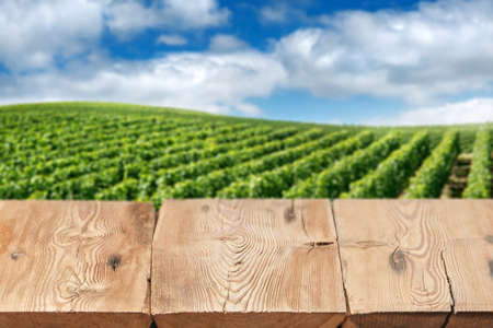 Wooden boards or table top against blurred vineyard under blue sky on background. Use as template for display or montage of your products. Close up Banque d'images