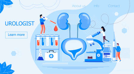 Urologist concept for web, for cystitis, urolithiasis, nephroptosis, renal failure problems. Pyelonephritis, diseases and kidney stones illustrations are shown. Tiny doctors treat kidneys.