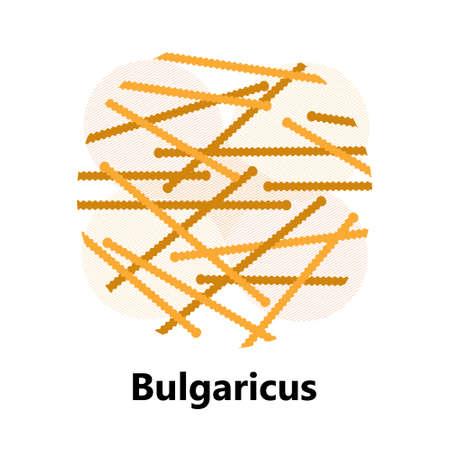 Probiotics bacteria vector. Lactobacillus, bulgaricus with text. Amorphous symbols for milk products are shown such as yogurt, acidophilus. Lactococcus, propionibacterium are shown.