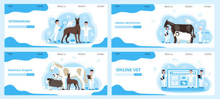 Veterinarian concept vector. Animal doctors diagnosing diseases of dog, cat. Pet health care for website. Veterinary physician treatment illness