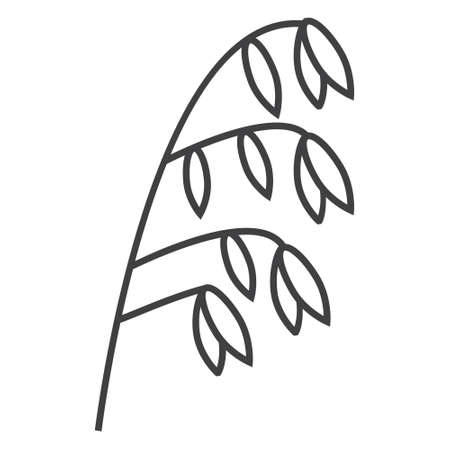 Oatmeal spikelet, grain icon vector. Rye, wheat, oat plant in outline style.