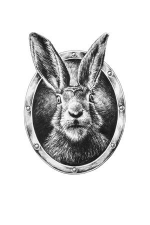 Rabbit in oval frame. Pencil illustration.