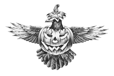 The crow in the pumpkin on Halloween. Pencil illustration Фото со стока - 65786440