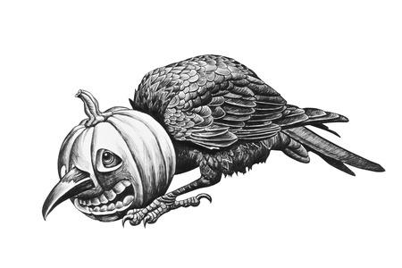 Raven head stuck in a pumpkin. Pencil drawing illustration.