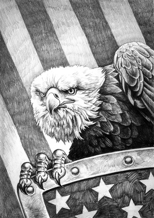 A pencil drawing of the American bald eagle with a shield on the flag of the United States of America in the background. Reklamní fotografie - 65786451