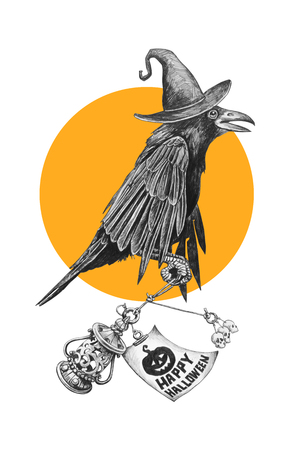 Black crow in a witches hat on Halloween night. Pencil drawing illustration. Фото со стока - 65786458