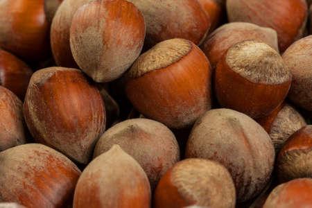 cobnut: ripe whole hazelnuts macro closeup abstract background