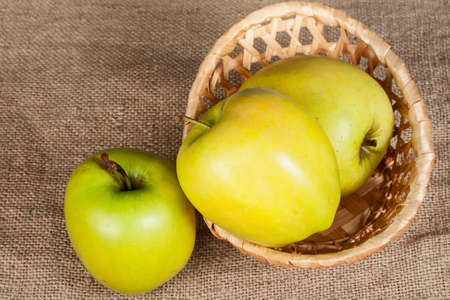 yellow apples in wicker basket  on cloth sack  photo