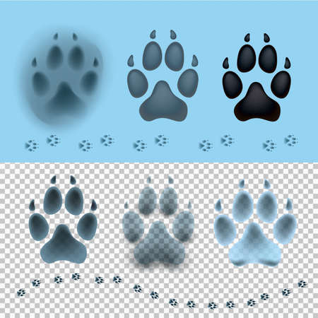 impression: Dog set paw print flat icon for animal apps and websites. Footprint on the snow. Template for your graphic design. Vector illustration. Isolated on transparent and light blue background. Illustration