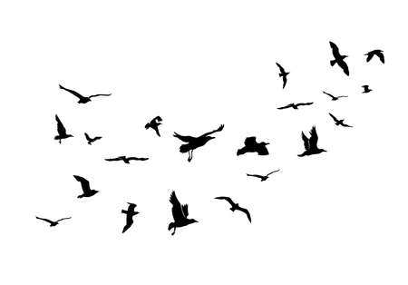 A Flock of Flying Birds. Vector Illustration. Isolated On White Background.