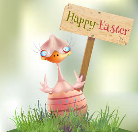 hatched: Easter chick hatched, happy easter. Vector illustration