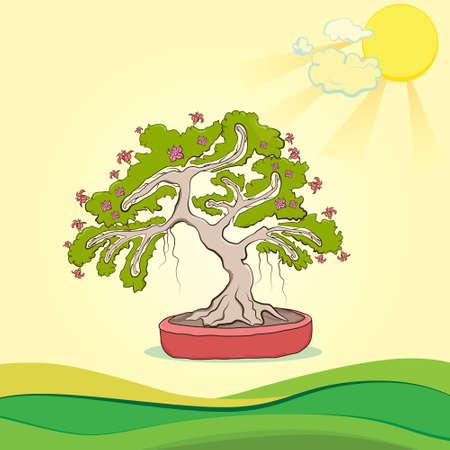 bonsai tree: bonsai tree, tree in a pot, yellow the sun, vector illustration