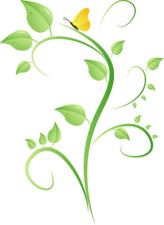 Vector bush with leaves,waterdrop and butterfly on white background