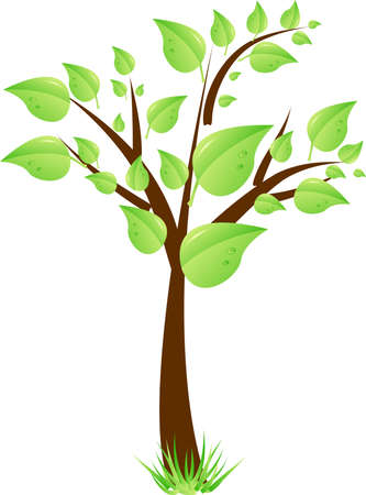 Beauty tree with green leaves and grass. Spring, ecology, enviroment protection symbol Vector