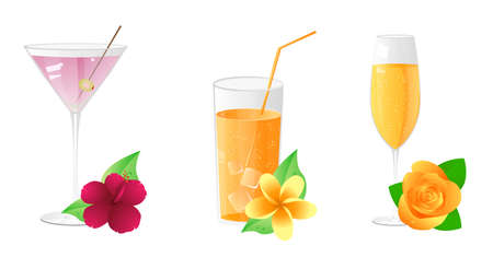 Martini, juice, champagne with beautiful flowers Stock Vector - 7322861