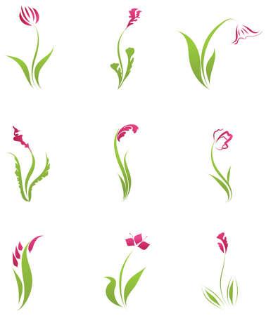 helechos: Conjunto abstracto de icono de flores y planes