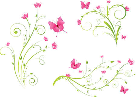 mariposa verde: Conjunto de elementos florales hermosos con flores y mariposas