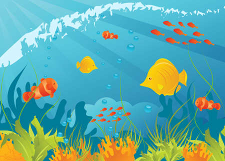 Underwater background with different fishes, algae and corals