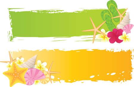 hawai: Dos pancartas con conchas de mar, estrellas de mar, las flores y los elementos del grunge Vectores