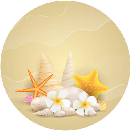 Sand round background with pebble stones, seashells, starfishes and tropical flowers Vector