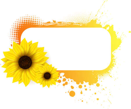 Colorful grunge frame with two sunflowers