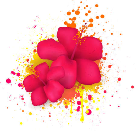 splattered: Two red hibiscus flowers on grunge splattered backround