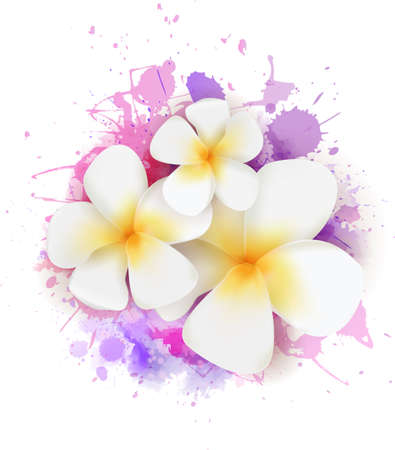 Abstract summer background with plumeria flowers on colorful watercolor splash