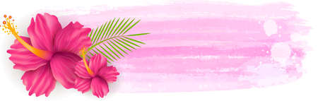 hibiscus background: Pink hibiscus flowers on grunge watercolor imitation background banner