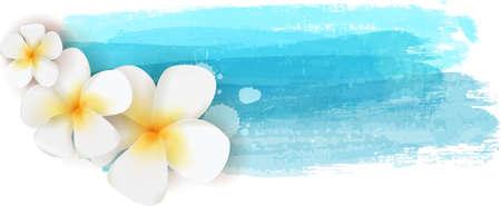 Plumeria flowers on blue watercolor imitation banner - summer illustration Vettoriali