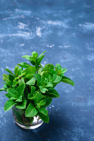 Green fresh organic mint in a glass cup with water. On concrete dark table background. Freshly cut mint leaves.