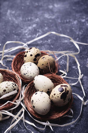 Nest with a quail eggs. Easter background composition. Retro vintage style. Stock Photo