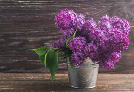 Bouquet of purple lilac flowers in small decorative tin bucket. Dark brown wooden background. Spring romantic flowers decoration.