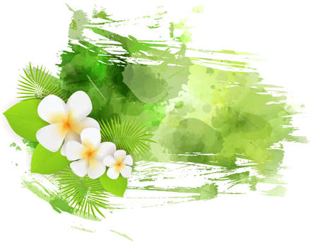 Abstract tropical grunge background with plumeria flowers and palm leaves on colorful  splash. Green colored.