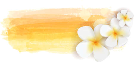 Plumeria flowers on yellow watercolor imitation brushed banner - summer illustration