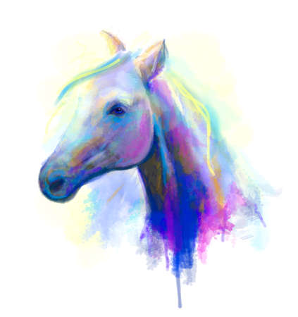 oil painting: Abstract multi-coloured head horse. Digital painting Stock Photo