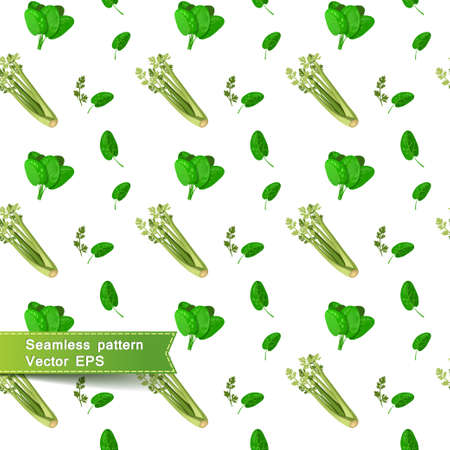 celery: Seamless pattern with slices of vegetables. Celery and spinach on a white background Vector illustration. Illustration