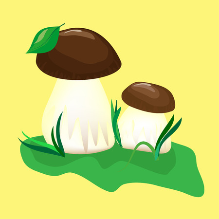 mushroom on the green grass on yellow background