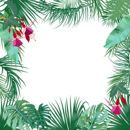 Vector tropical jungle banner, frame with palm trees, flowers and leaves on white background for wedding,quotes, Birthday and invitation cards,greeting cards, print, blogs, bridal cards.