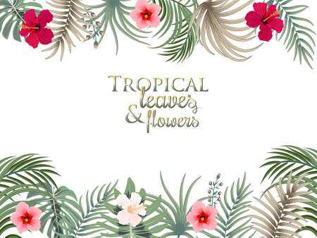 Tropical frame with palm leaves, flowers, jungle leaves, botanical vector illustration on white background.