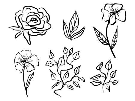 Set of abstract flower and leaves. Hand drawn line-art. Contour black drawing, botanical element. Vector illustration for greeting cards and invitations, isolate on white background.