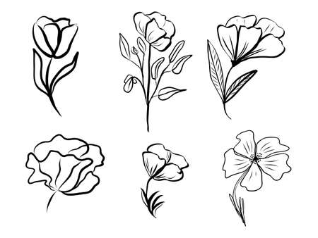 Set of abstract flower. Hand drawn line-art. Contour black drawing, botanical element. Vector illustration for greeting cards and invitations, isolate on white background.