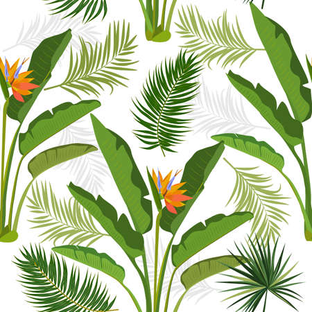 Vector tropical seamless pattern with leaves of strelitzia, palm tree and flowers. Botany light background, jungle wallpaper. 矢量图像
