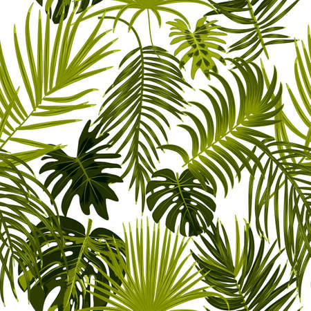 Vector seamless pattern of leaves monstera, flowers, tropical jungle leaves of palm tree background. 矢量图像