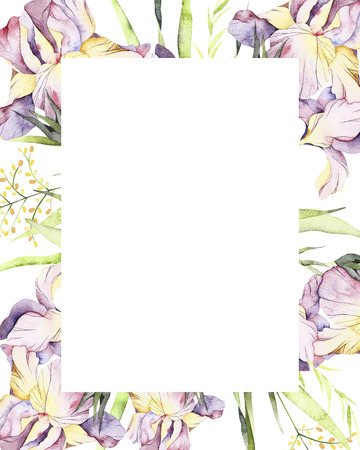Watercolor wild herb frame. Handpainted watercolor clipart of wild herbs and flowers. Use for postcard design, print, invitations, wedding invitation, packaging and more. Standard-Bild - 112609393