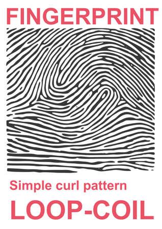 simplified: Fingerprint identification Illustration