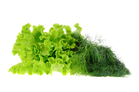 Dill and salad  isolated on the white background