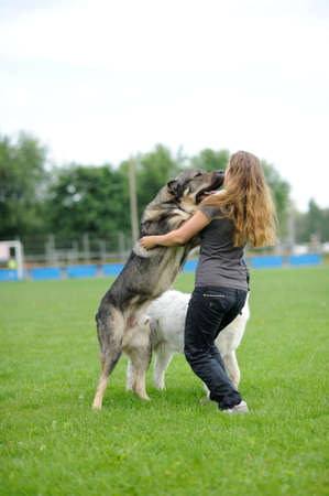 happy girl playing with dog Stock Photo - 14145523