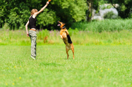 endear: girl playing with dog on green meadow