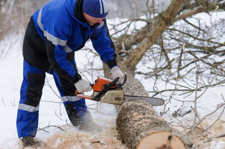 Close-up of woodcutter sawing chainsaw in motion, sawdust fly to sides. wood felling, deforestation.